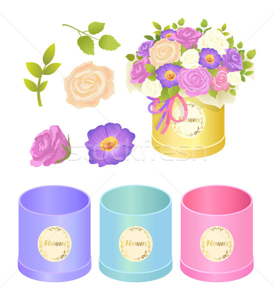 Boxes and Flowers Collection Vector Illustration Stock photo © robuart