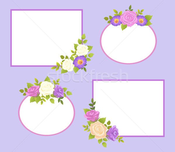 Set of Photo Frames Color Rose and Daisy Flowers Stock photo © robuart