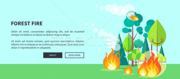 Forest Fire Web Poster with Inscription. Vector Stock photo © robuart