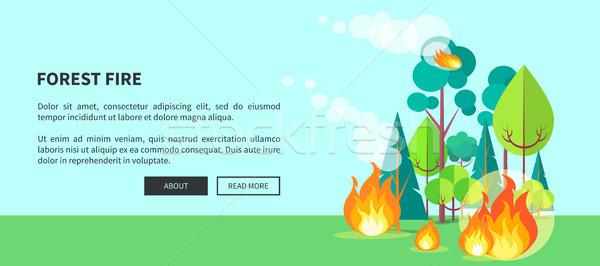 Erdőtűz háló poszter felirat vektor futótűz Stock fotó © robuart