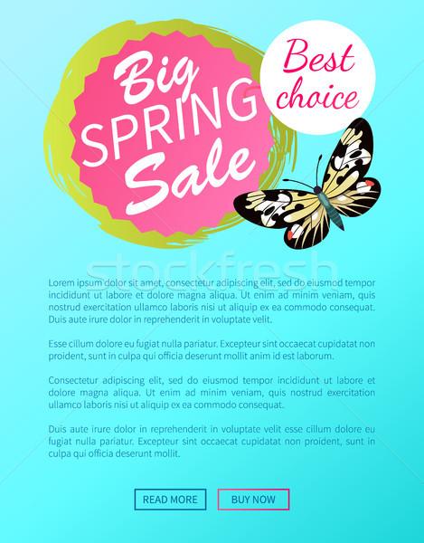 En İyi seçim büyük bahar satış etiket kelebek Stok fotoğraf © robuart