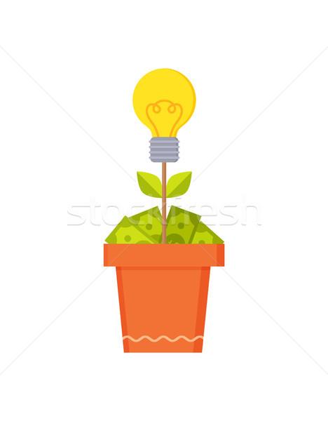 Stockfoto: Elektrische · lamp · bruin · pot · bloem