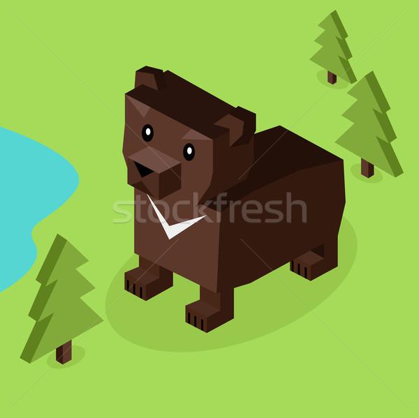 Wild Animal Bear Isometric 3d Design Stock photo © robuart