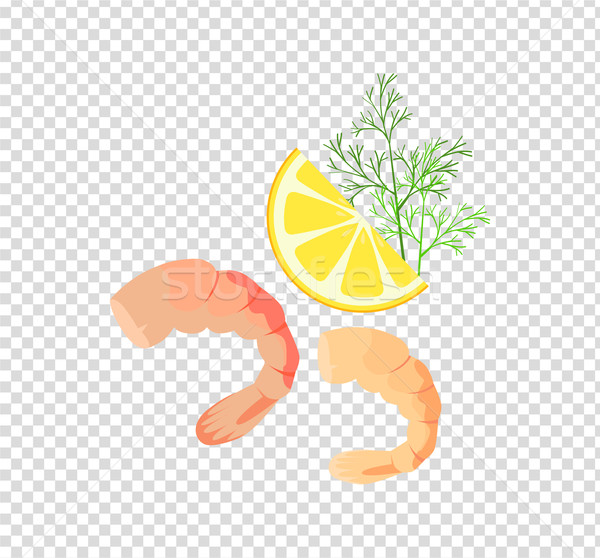 Shrimps Variations Vector Illustration Stock photo © robuart