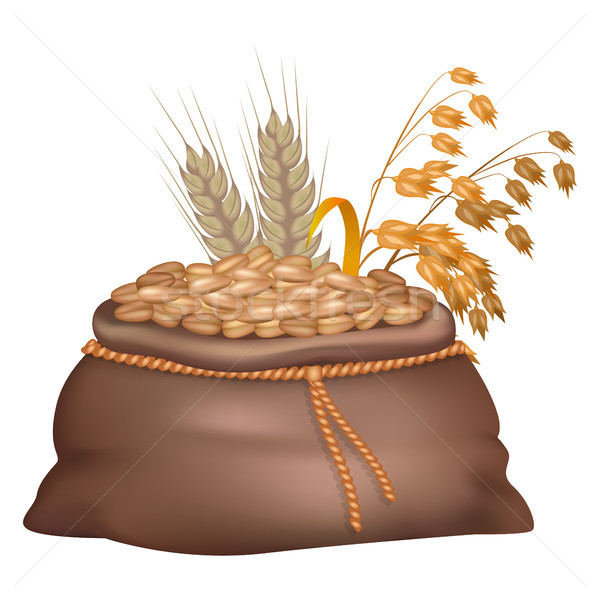 Rye Grains in Brown Sack with its and Oat Ears Stock photo © robuart