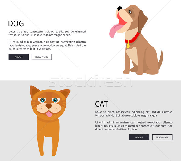 Dog and Cat Conceptual Banner Vector Illustration Stock photo © robuart