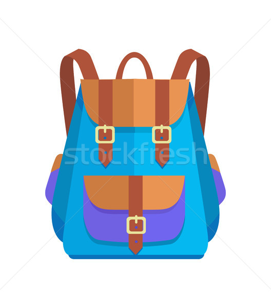 Rucksack Unisex in Brown and Blue Colors Vector Stock photo © robuart
