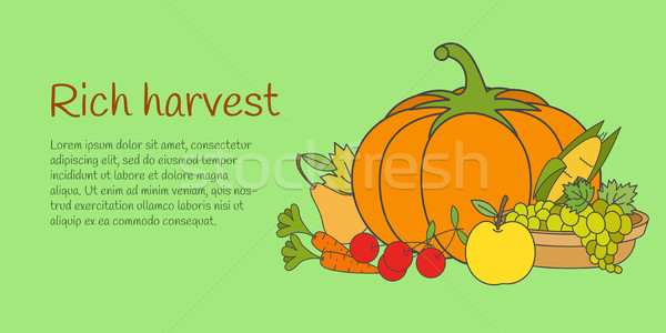Rich Harvest Banner with Fruits and Vegetables Stock photo © robuart