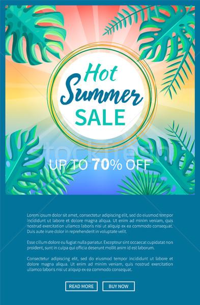Hot lata sprzedaży plakat w górę Zdjęcia stock © robuart
