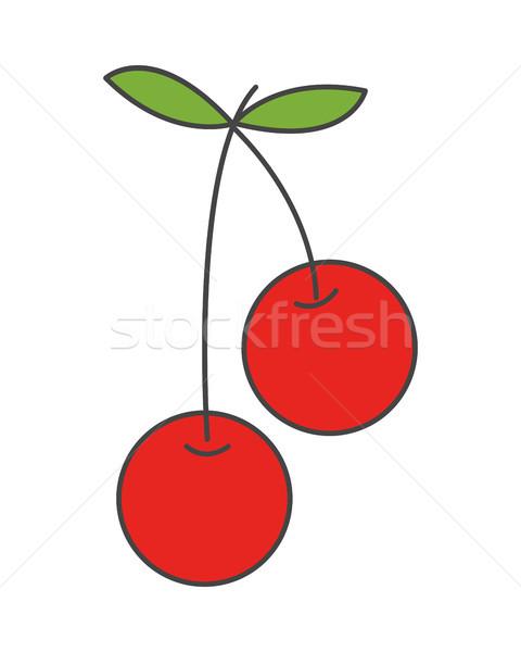 два вишни пар лист вектора икона Сток-фото © robuart