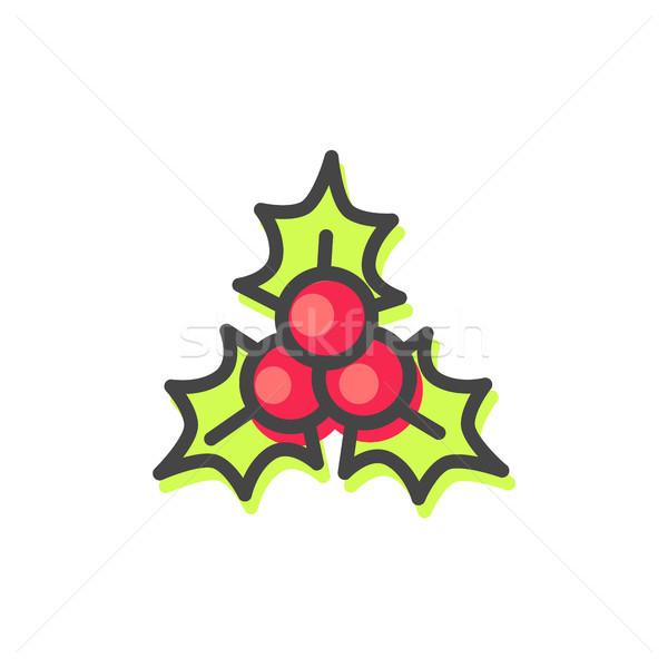 Visco folhas natal folhas verdes vermelho Foto stock © robuart