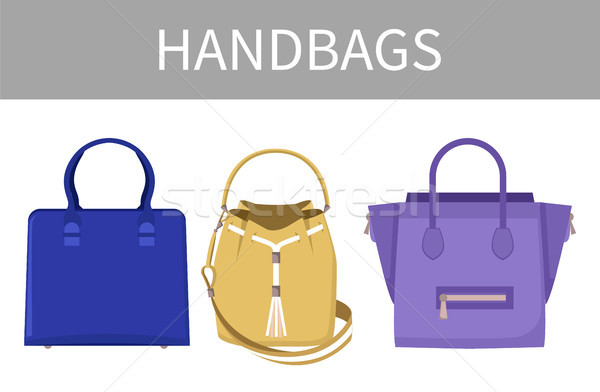 Set of Varied Handbags Color Vector Illustration Stock photo © robuart