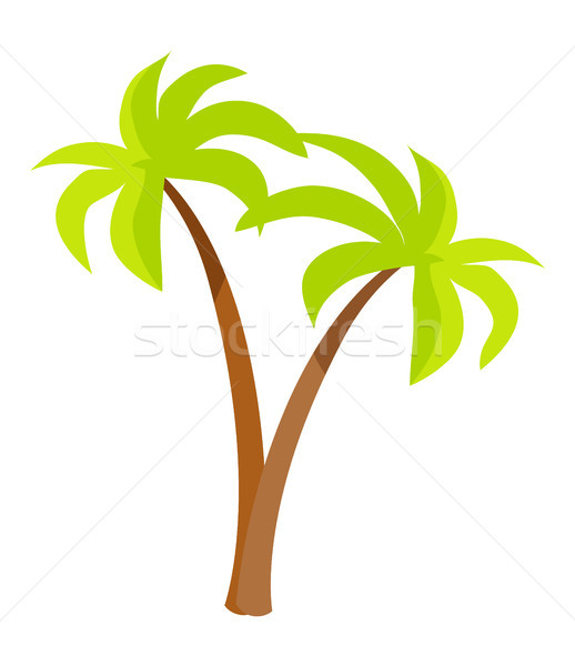 Palm Trees with Green Leaves and Trunk, Palm Icons Stock photo © robuart