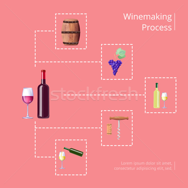 Winemaking Process Vector Illustration on Red Stock photo © robuart