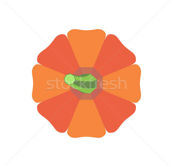 Halloween Pumpkin with Green Stem Vegetable Icon Stock photo © robuart