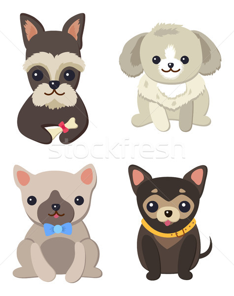 Dogs Variety Collection Poster Vector Illustration Stock photo © robuart