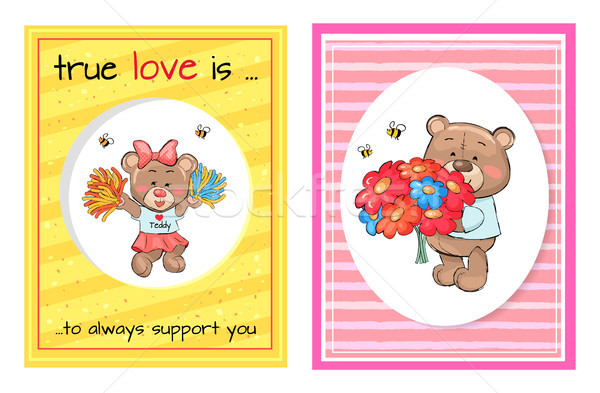 True Love Always Support Teddy Cheerleader Bouquet Stock photo © robuart
