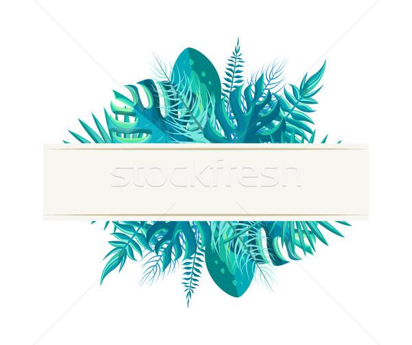 Foto stock: Vacío · banner · tropicales · plantas · hojas · azul