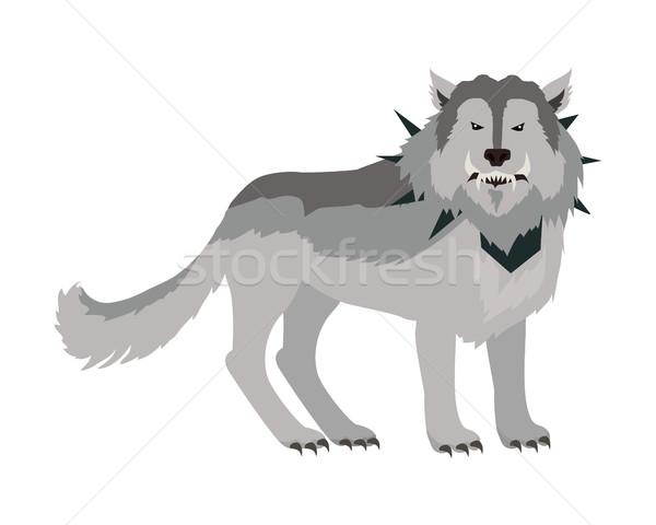 Szary wilk na zewnątrz stylizowany fantasy Zdjęcia stock © robuart