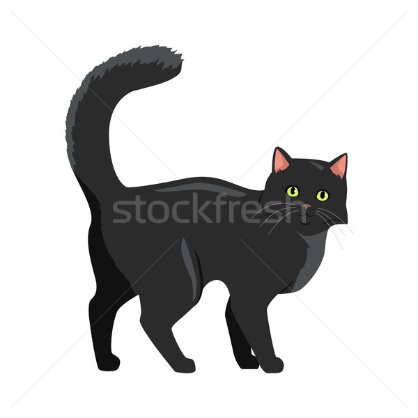Gato preto vetor projeto ilustração bonitinho caminhada Foto stock © robuart