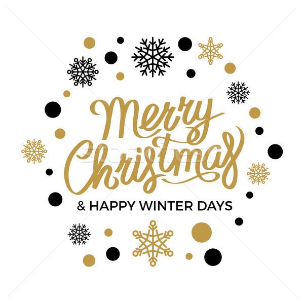 Neşeli Noel happy new year vektör kar taneleri siyah Stok fotoğraf © robuart