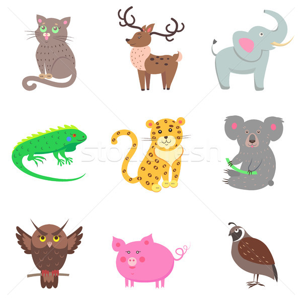 Quail, Pig, Koala, Elephant, Jaguar, Iguana, Deer Stock photo © robuart