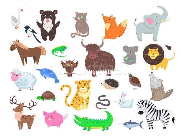 Schattige dieren cartoon vector ingesteld cute wild Stockfoto © robuart