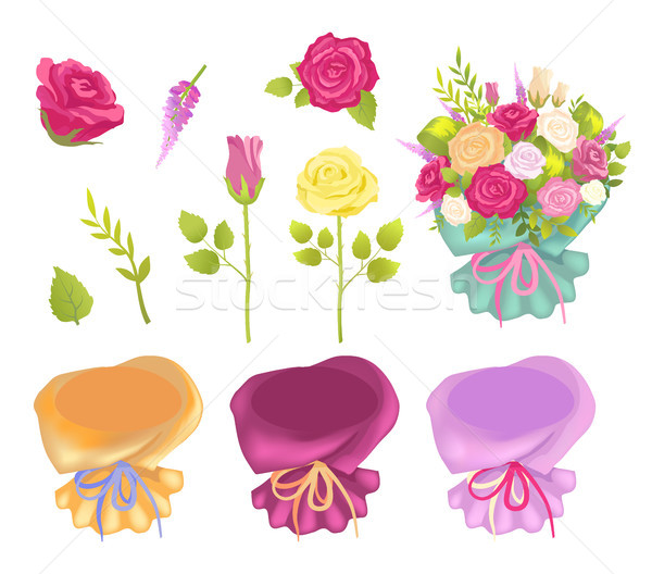 Set of Flowers and Wrapping Vector Illustration Stock photo © robuart