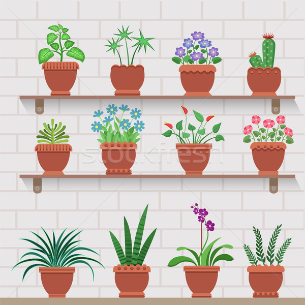 Plantas estantería adjunto pared de ladrillo casa Foto stock © robuart