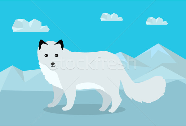 Polar Fox Vector Illustration in Flat Design Stock photo © robuart