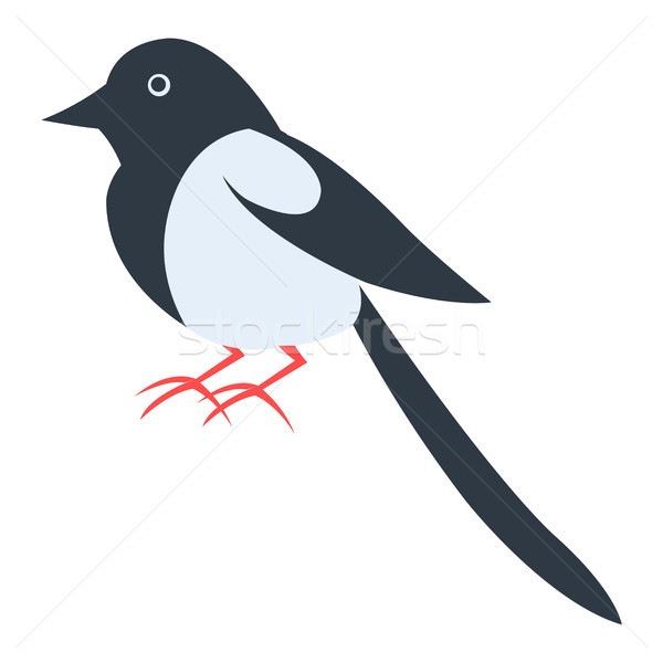 Cute Magpie Cartoon Flat Vector Sticker or Icon Stock photo © robuart