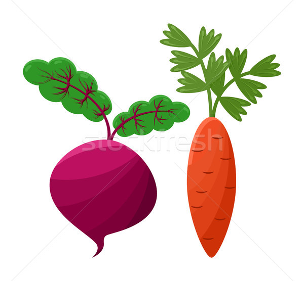 Purple Beetroot and Orange Carrot, Vector Icons Stock photo © robuart