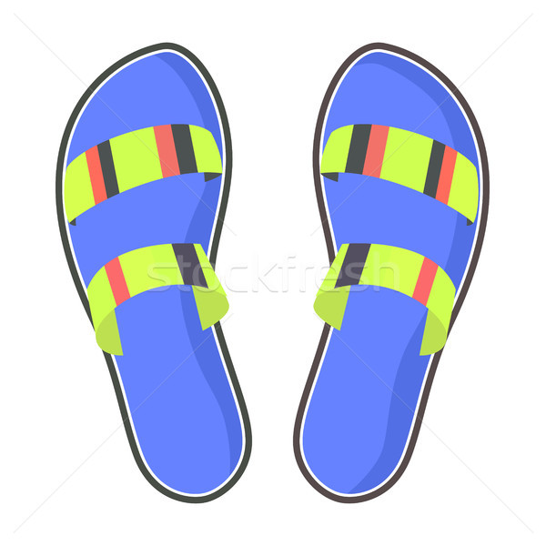 Colorful Pair of Flip-Flops Isolated Illustration Stock photo © robuart