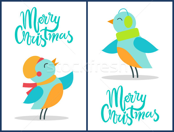 Marry Christmas Birds Set Vector Illustration Stock photo © robuart