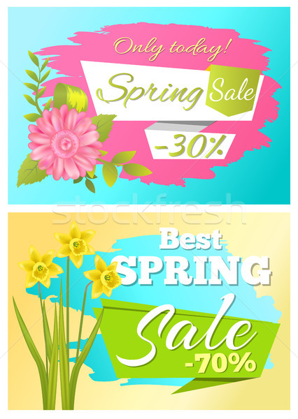 Sale 70 Off Sticker Daffodil Narcissus Bulbous Stock photo © robuart