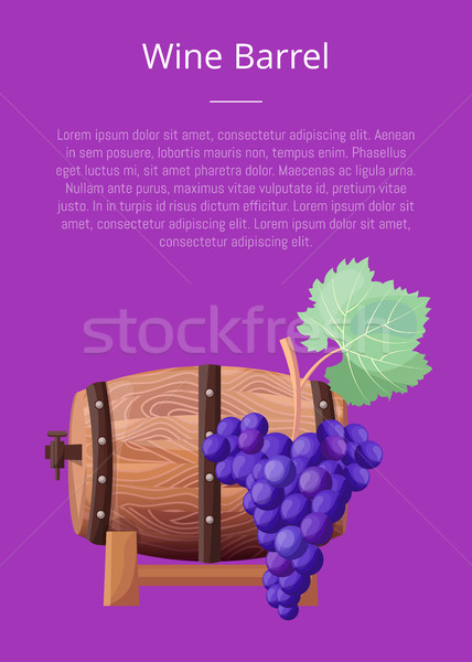 Wine Barrel, Text and Title Vector Illustration Stock photo © robuart