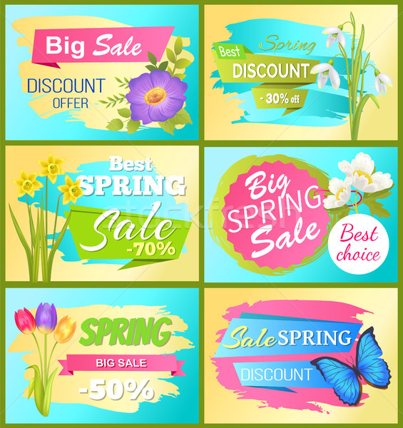 Best Choice Big Spring Sale Adver Tag Label Poster Stock photo © robuart