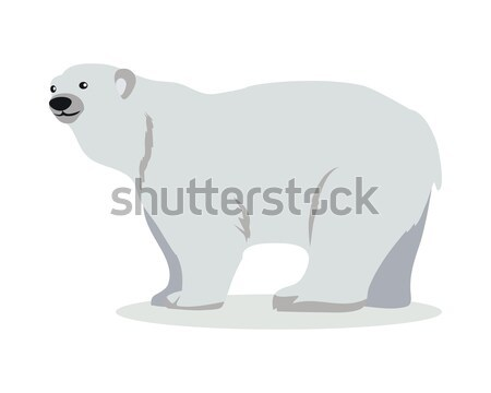 Polar Bear Cartoon Flat Vector Illustration Stock photo © robuart