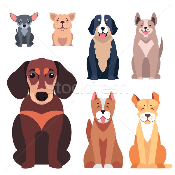 Cute honden cartoon vectoren Stockfoto © robuart