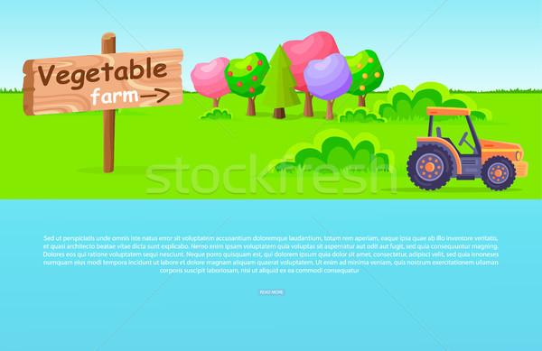 Plantaardige boerderij bomen trekker houten groene Stockfoto © robuart