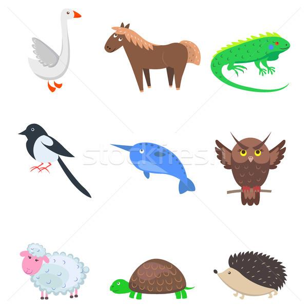 Stock photo: Set of Cartoon Animal Pet and Wild Nine Icons