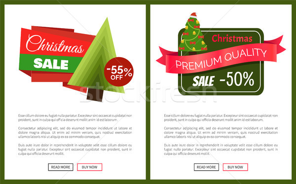 Two Best Christmas Sale Cards Vector Illustration Stock photo © robuart