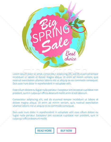 Nagy tavasz vásár háló poszter legjobb választás Stock fotó © robuart