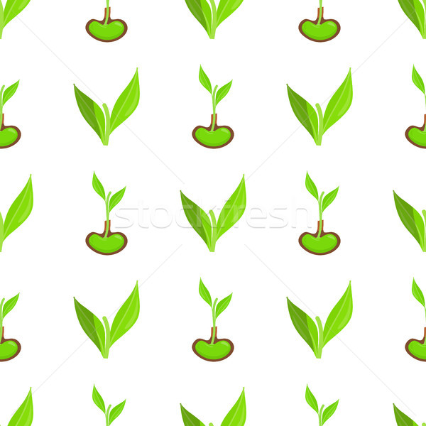 Seamless Pattern with Green Leaves and Sprout Stock photo © robuart