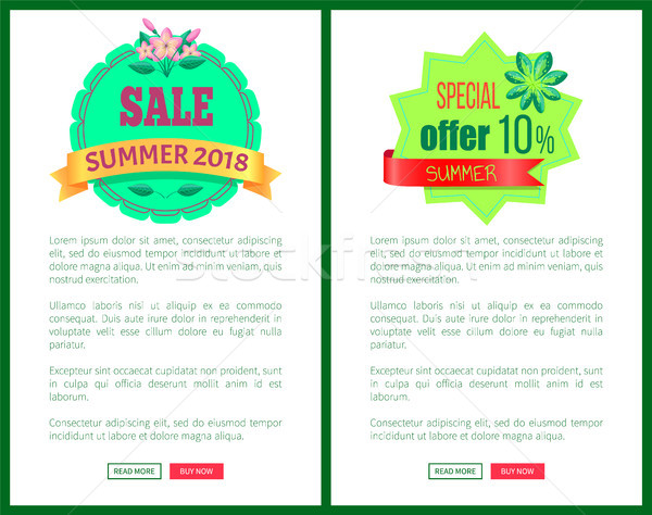 Sale Summer 2018 Special Offer Promotional Emblems Stock photo © robuart