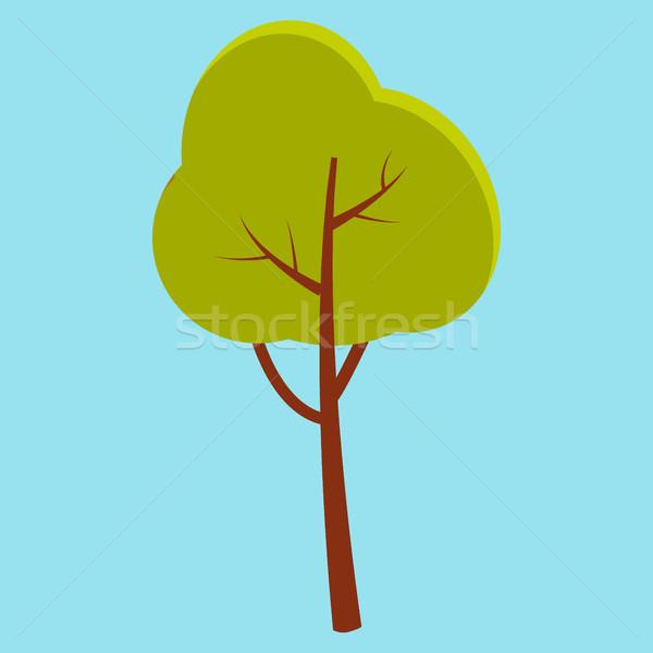 Grünen Sommer Baum braun Stengel isoliert Stock foto © robuart