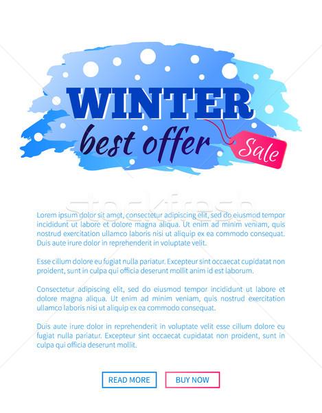 Foto stock: Inverno · o · melhor · oferecer · venda · promo · teia