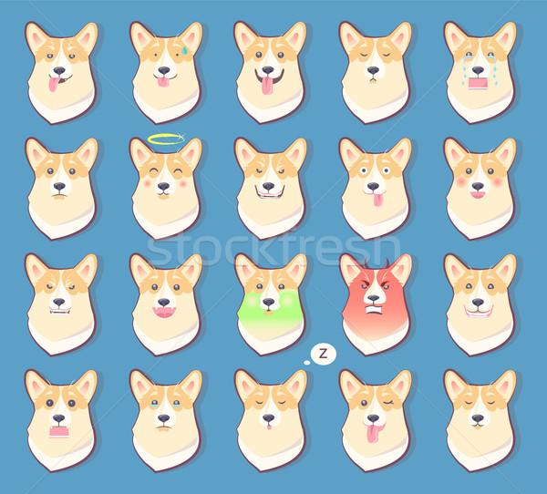 Conjunto cães emoções bonitinho cachorro símbolo Foto stock © robuart