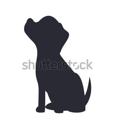 Sitting Dog, Black Silhouette, Vector Illustration Stock photo © robuart