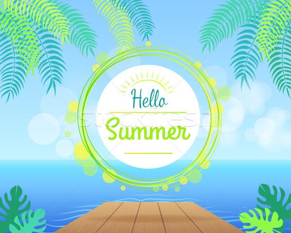 Hello nyár promóciós poszter zöld pálmafák Stock fotó © robuart